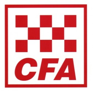 CFA (Chartered Financial Analyst) Exam