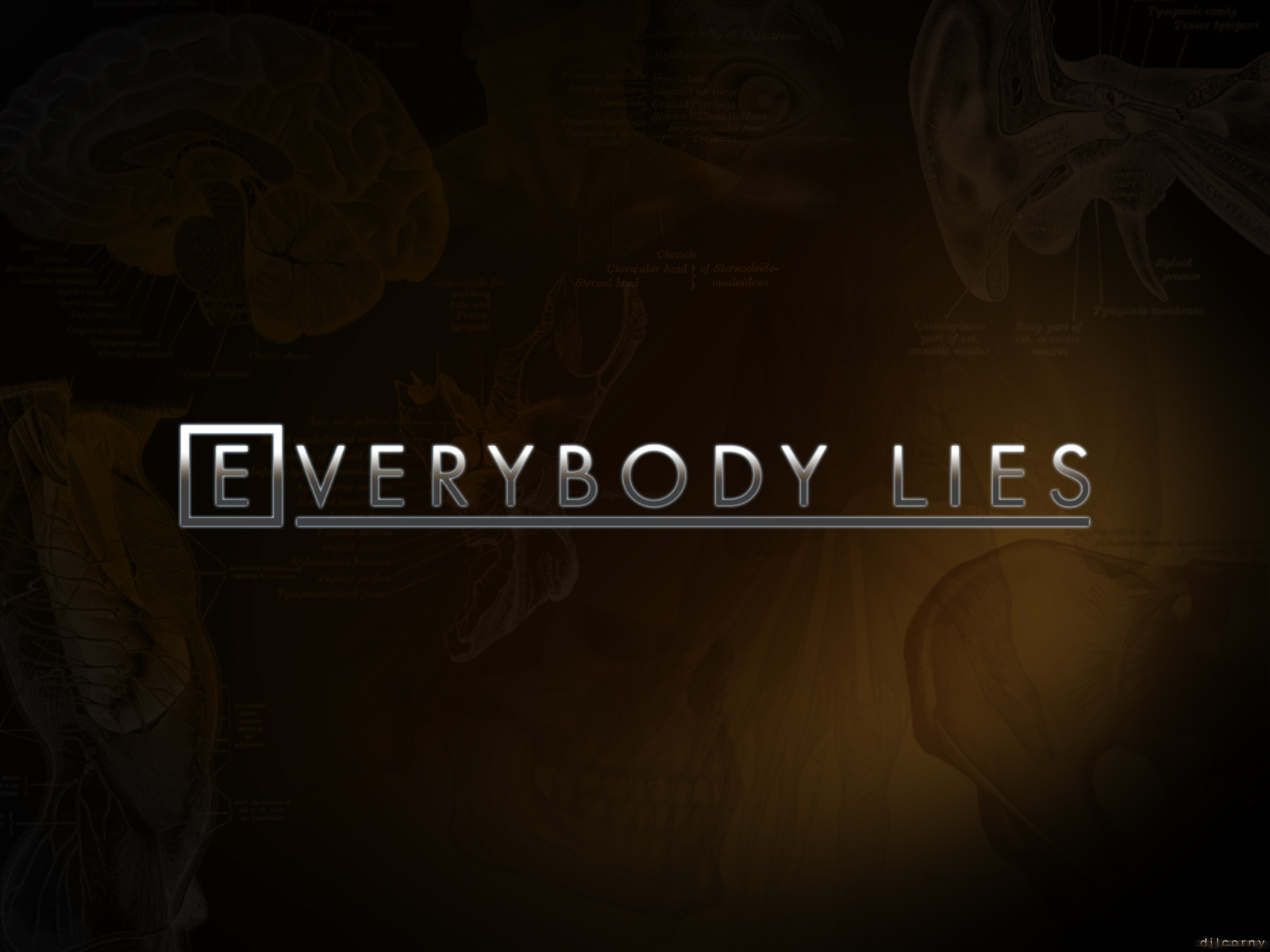 Image result for lying tips