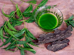 neem-benefits