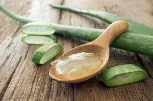 Aloe-Vera-Benefits-For-Weight-Loss-Arthritis-Uses
