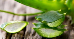 Aloe-Vera-Uses-for-skin-hair-weight-loss