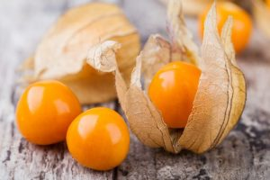 physalis.jpg.638x0_q80_crop-smart